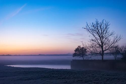 2 3 23 misty morning meadow portmeadow port sillouhette silhouette tree winter cold sunrise dawn mist fog sky colour color nikon wolvercote oxford oxfordshire trees project 365 d750