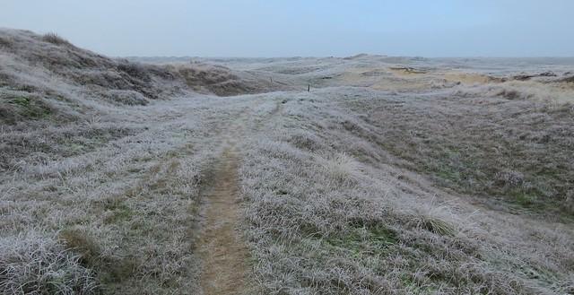 Frozen dunes