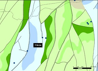 TYM_04_M.V.LOZANO_CERINCHE_MAP.GEOL