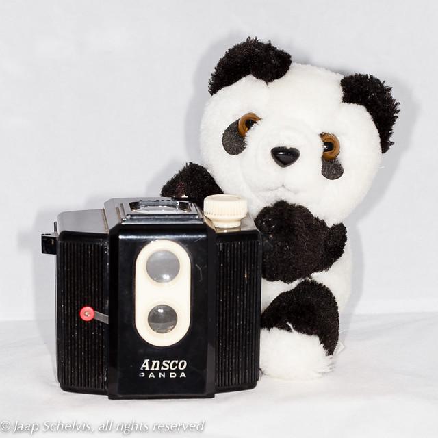 Panda holding Panda