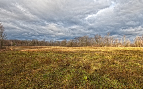 sunlight ontario field kingston dogpark
