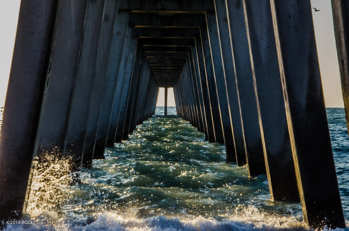 venice florida venicebeach fishingpier weeklytheme underthepier nikond7000 afsnikkor18105mm13556g bgdl lightroom5 flickrlounge
