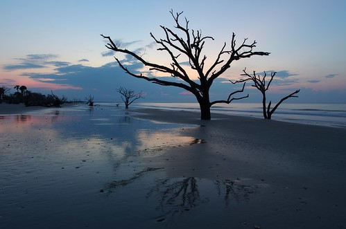ocean blue trees seascape reflection beach sc water silhouette sunrise photography bay long exposure pentax south atlantic filter nd carolina botany 15mm density edisto neutral k5ii