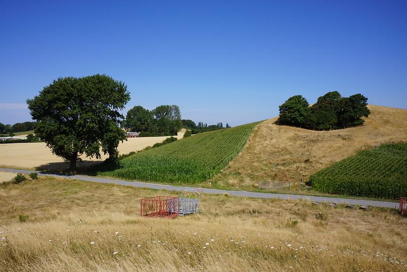 Kaedeby-Haver-2014-07-24 (26)