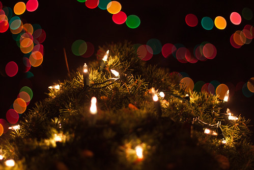 Christmas Lights | by O.S. Fisher