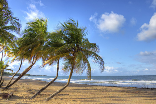Puerto Rico Beach Scene | by Joshua Siniscal Photography
