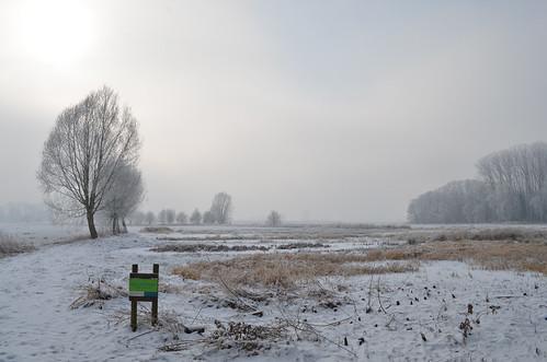 Molenbeek winterbeeld 2012