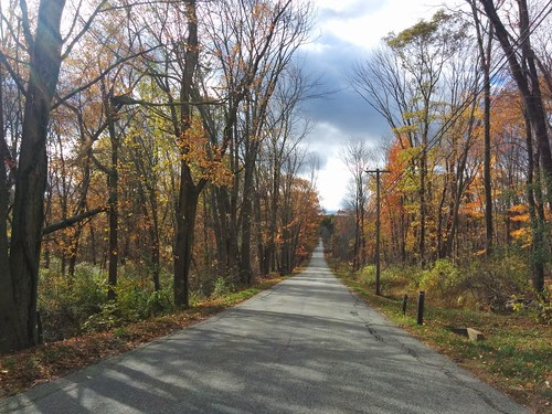 fall autumn foliage colors road driving newengland connecticut landscape scenery country countryside