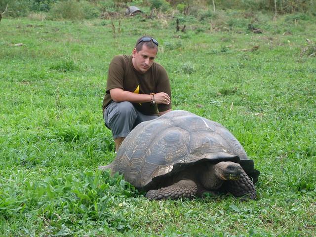 Sele detrás de una tortuga gigante de Galápagos
