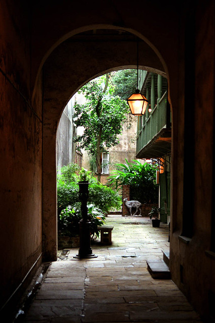Quiet Courtyard
