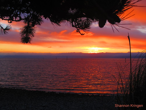 whidbey island painted sky   by shannonkringen