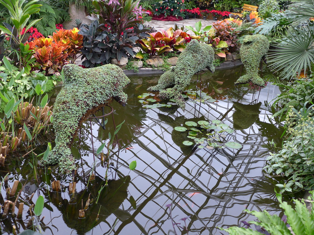 Dolphin Topiaries Gage Park Tropical Greenhouse Joe Flickr