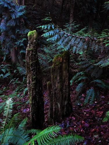 The monoliths | by Steve Rawley