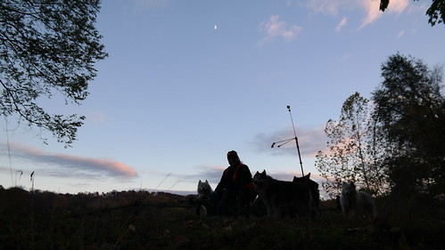 20141030_174631_1   by woofdriver