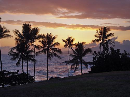 Blue Hawaii Photo Tour -Joe 11 | by KathyCat102