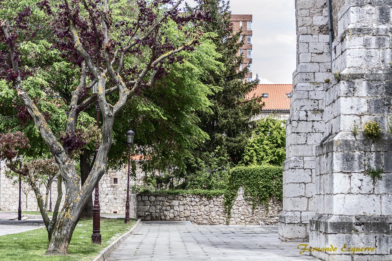 Paseando por Burgos