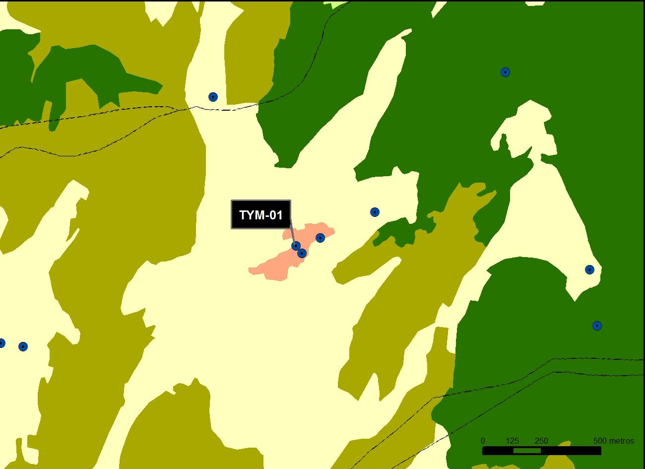 TYM_01_M.V.LOZANO_PLAZA_MAP.VEG