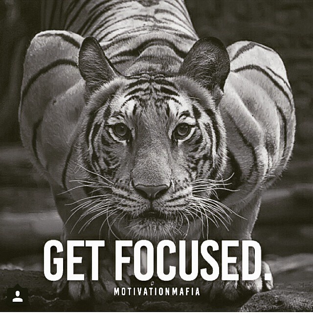 Get Focused Less Talk More Action Enough Said Flickr