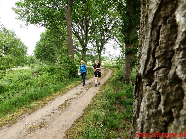 2016-05-21           Scherpenzeel             46 Km  (50)