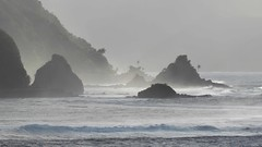 American Samoa: Misty Morning
