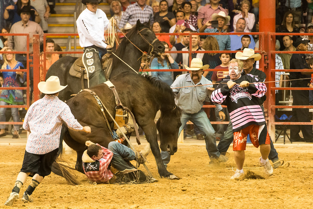 Davie Pro Rodeo Oh This Isn T Going To End Well I M
