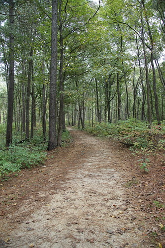 Old Trace, Natchez Trace Parkway | by SomePhotosTakenByMe