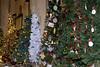 Festival of Christmas Trees 2014