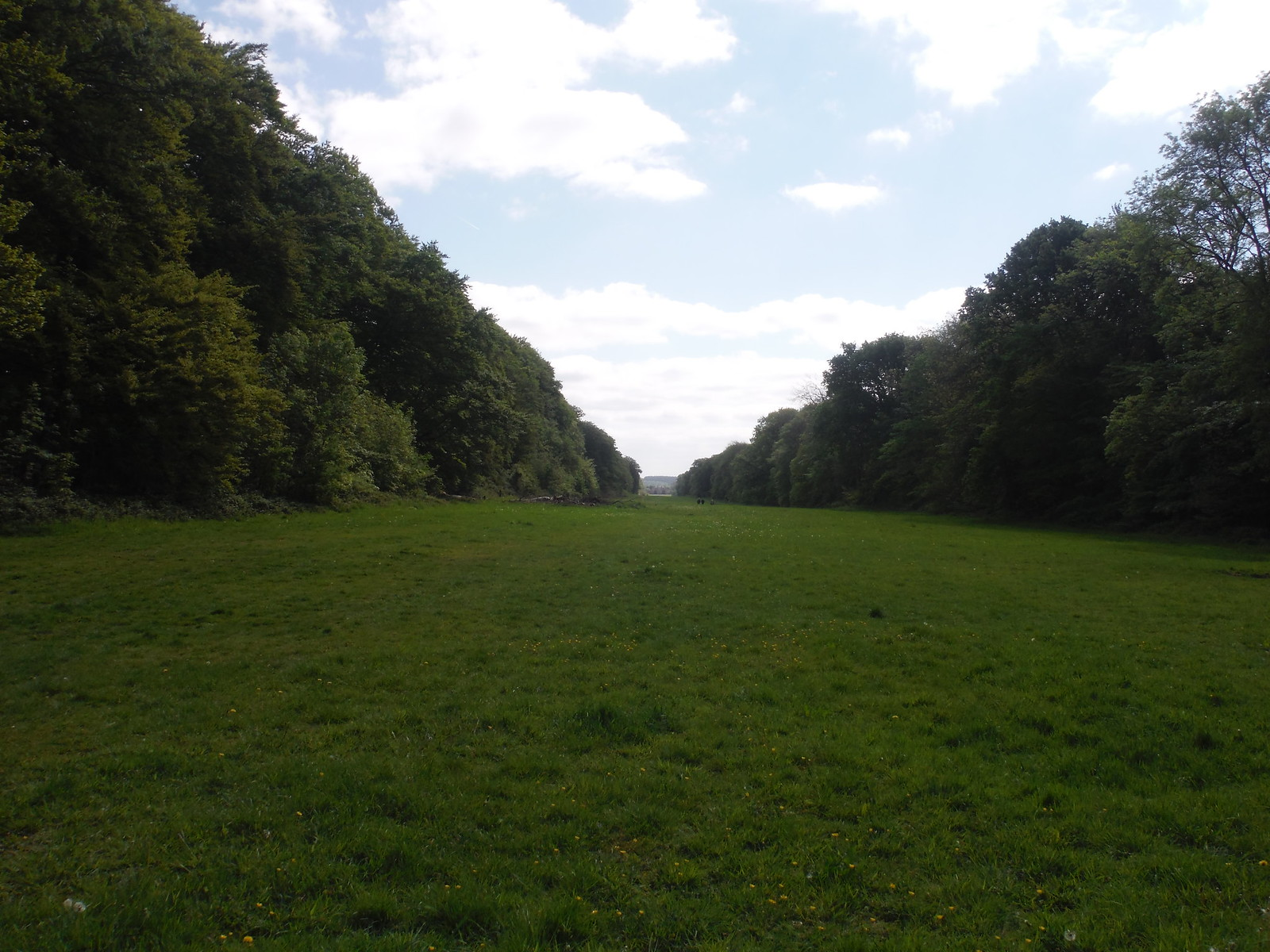 1 mile Beech Avenue, Stansted Park SWC Walk Rowlands Castle Circular