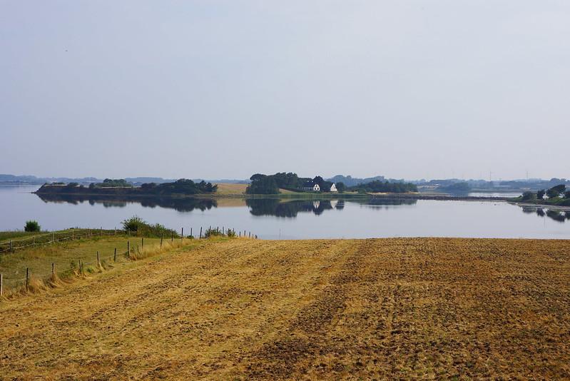 Kaedeby-Haver-2014-07-27 (4)