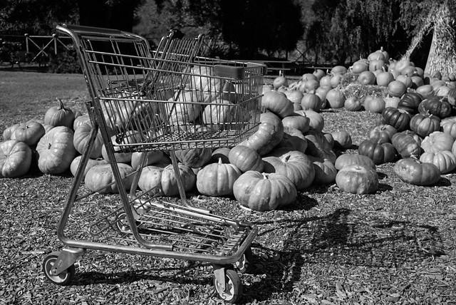 many happy halfling shopping carts never stray far from home
