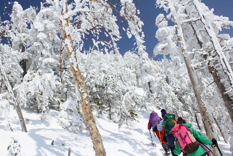 北横岳の雪の斜面