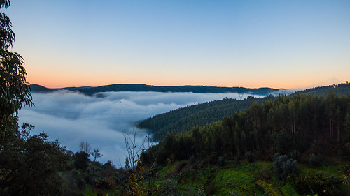 morning trees cold fog sunrise hills blanket coimbra manhã montes nascerdosol nevoeiro manto fujifilms6500 ruinunes