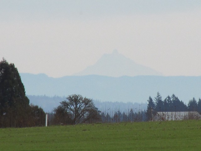 Even elusive Mount Jefferson was visible today!