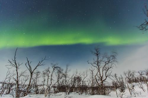 Auroras Boreales en Noruega-40 | by luisete