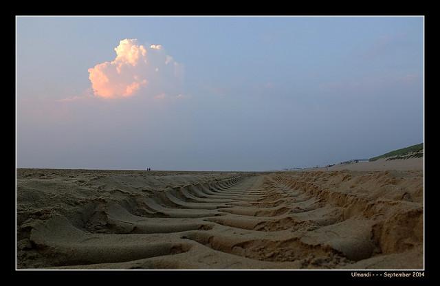 Ulmandi - Katwijk - Sept. 2014