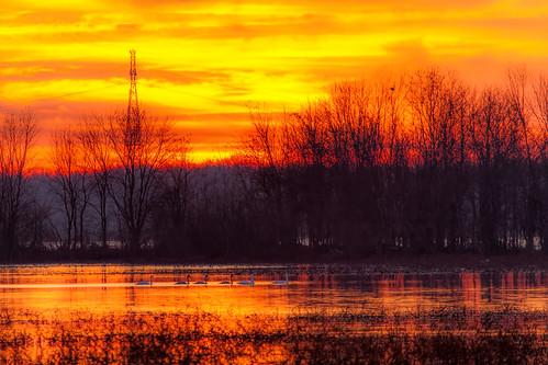 november sky nature clouds sunrise canon midwest unitedstates missouri mississippiriver alton 2014 westalton eosm riverlandsmigratorybirdsanctuary