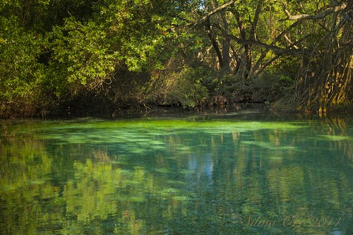 nature wildlife pedernales borderfx jaraguanationalpark lagunaoviedo