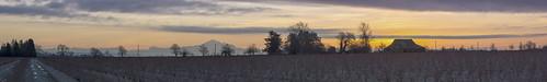 new panorama house canada barn sunrise river washington nikon day mt baker bc stitch state farm pano delta columbia front mount blueberry fields british years fraser gord d800 mckenna gordmckenna