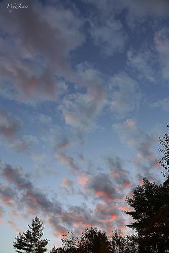 trees sunset sky clouds vermont np cloudscape putney sweettreefarm wyojones