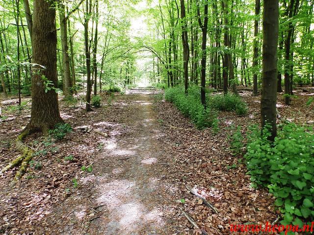 2016-05-14        Pinkster-           wandeltocht        20 Km (15)