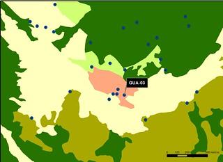 GUA_03_M.V.LOZANO_PARQUE_MAP.VEG