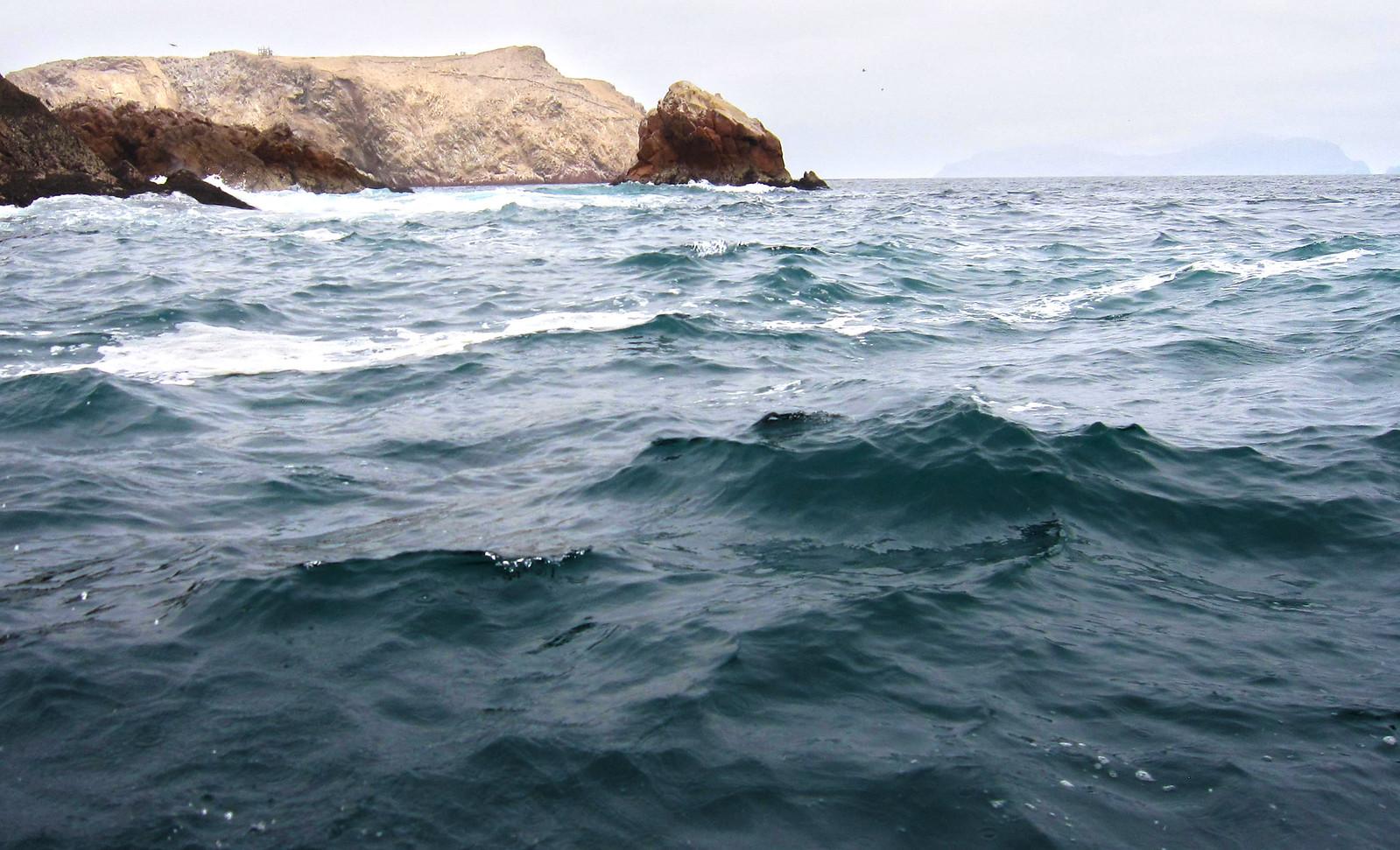 Islas Ballestas 108