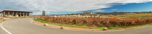 helwig winery panoramic