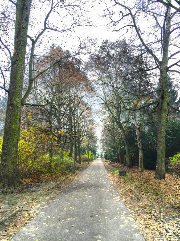 Regensburg Park