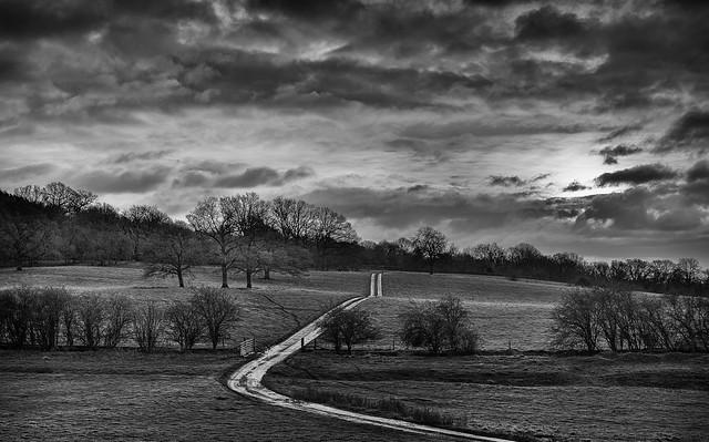 2014 Old Hills - Farm Track Under Sky