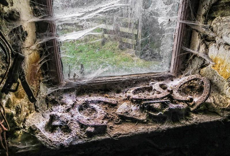 The forgotten window