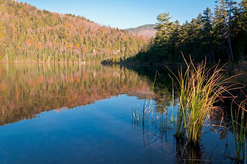 sea lake canada nature water forest landscape flickr quebec lac québec paysage wald forêt природа лес пейзаж озеро ліс parcnationaldumonttremblant parcsquébec