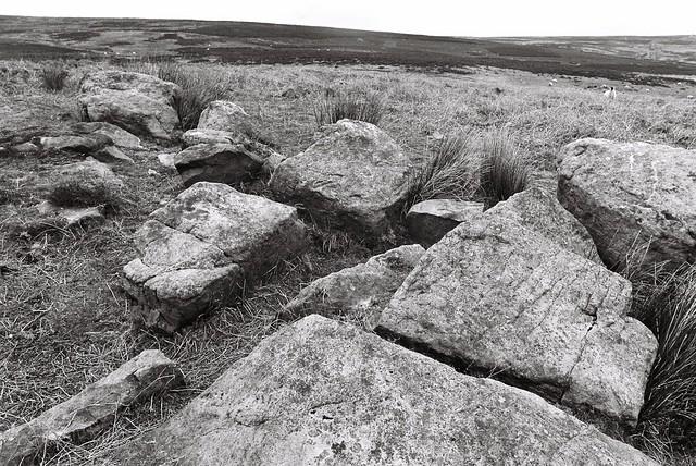11 Middleton Moor