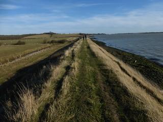 On the sea wall North Fambridge to Burnham-on-Crouch walk