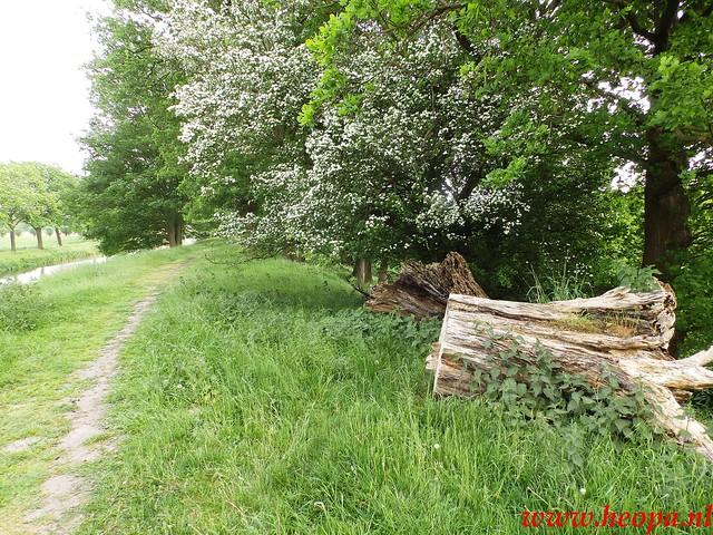 2016-05-21           Scherpenzeel             46 Km  (111)